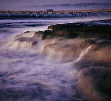 Sea Shore by Barbara  Brown