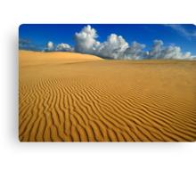 Barren plains Canvas Print
