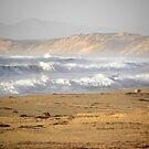 Stormy Seaside Surf by Sandra Gray