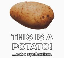 THIS IS A POTATO! ...not a synthesizer. by TEE-VERBS