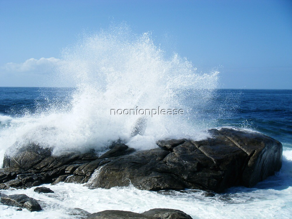 the big wave by noonionplease