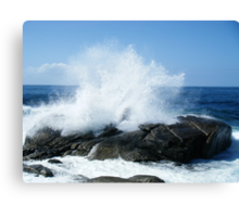 the big wave Canvas Print