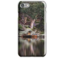 Dunns Swamp #1 - The HDR Experience iPhone Case/Skin