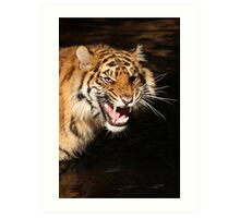 Tiger: Annoyance Art Print