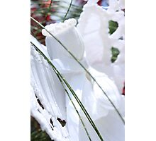 Shining Angel Photographic Print