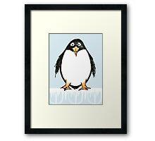Zoology Series - Penguin Framed Print