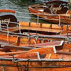 Windermere boats, Cumbria by Peter Vines