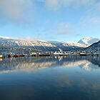 Tromso Bridge, Arctic Norway by Peter Vines