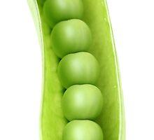 Peas in a Pod by dkaranouh