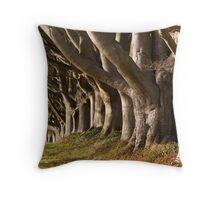 Kingston Lacy Beech Avenue, Dorset England Throw Pillow