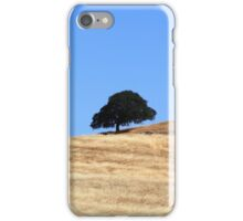 Beautiful Landscape iPhone Case/Skin