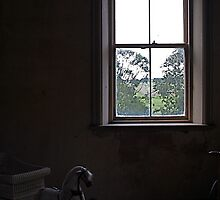 """Barwon Park Mansion ~ Window & Child's Horse Carriage"""" by stillpoint"