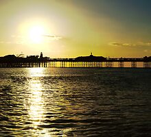 Brighton's Palace Pier Sunset by Eyeswide