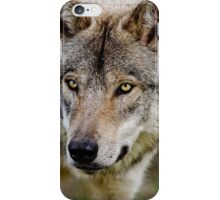 Timberwolf Portrait  iPhone Case/Skin