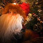 """""""Santa Up Close And Personal"""" by franticflagwave"""