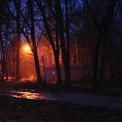 Rainy Morning before Sunrise by mltrue