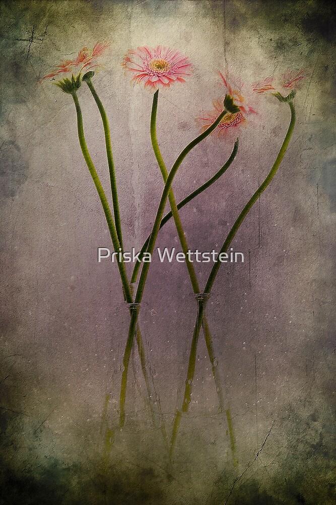 Dreaming of flowers by Priska Wettstein