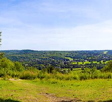 Norbury Park Leatherhead Panoramic by Eyeswide