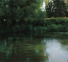 Summer River Mole Panoramic by Eyeswide