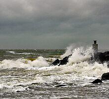 A windy day..... by Adri  Padmos