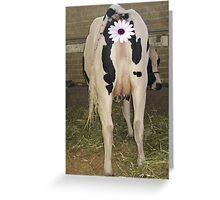 Udderly Bovine Greeting Card