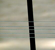 Barrier by Bluesrose