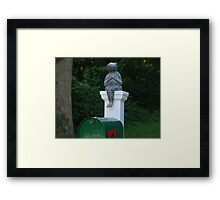 Please Mr. Postman Framed Print