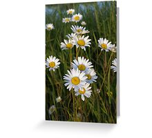 Waving In The Wind Greeting Card