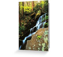 WATERFALL,TREMONT Greeting Card
