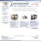Spirit Rising Foundation (spiritrisingfoundation.org) by ericellingsen