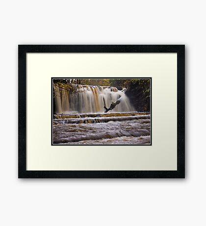 Scarloom Waterfall in spate Framed Print