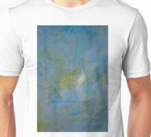 2015 January 6 Unisex T-Shirt