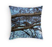 Leopard ~ 1974 Throw Pillow