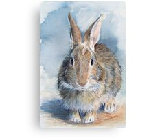 Hare's Lookin' at You Kid! Canvas Print