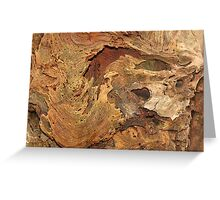 Tree Decay Greeting Card
