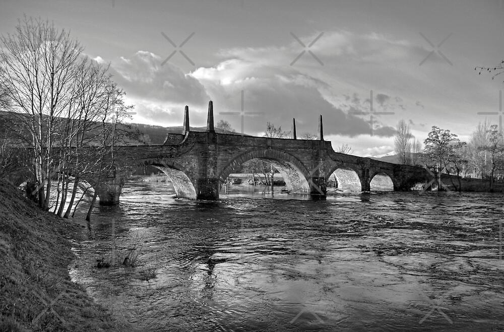 Wade's Bridge at Aberfeldy - B&W by Tom Gomez