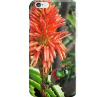 Sunbird on Aloe - 2 iPhone Case/Skin