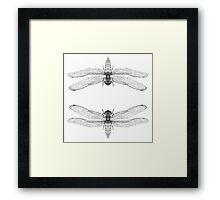 Dragonfly Art Print Framed Print