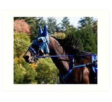 The Masked Wonder Horse Art Print