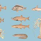 Vintage Fish design by Extreme-Fantasy