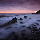 Pebbly Beach by Joel  Haldane