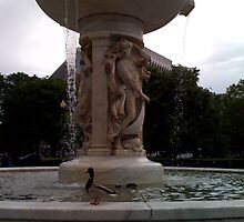 Dupont Circle Fountain (2) by SylviaS