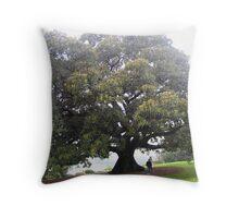 The Moreton Bay Fig Throw Pillow