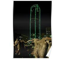 Cattle Drive in Downtown Dallas Poster