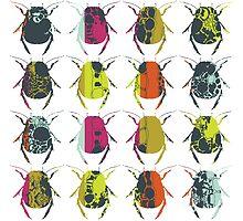 Beetle Print by zealdesign