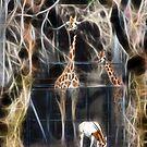 Jungle Zoo by miroslava
