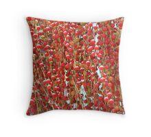Red Palmn Fruit-(Macro) Throw Pillow