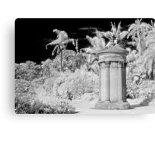 in the gardens of my dreams Canvas Print