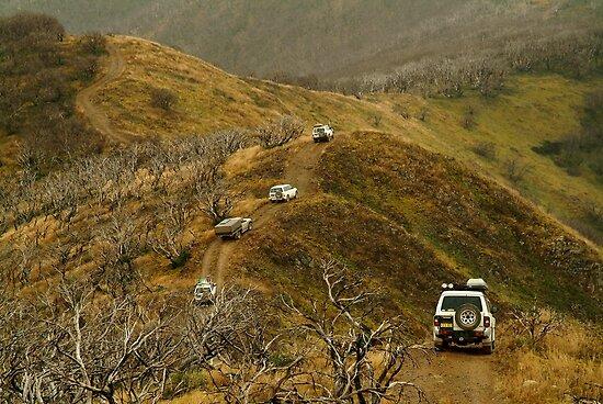 Mt Blue Rag,Victorian High Country by Joe Mortelliti