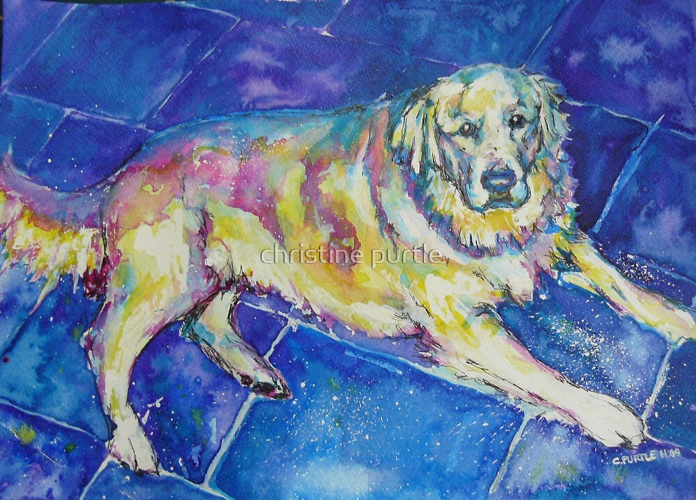 Petes pooch by christine purtle